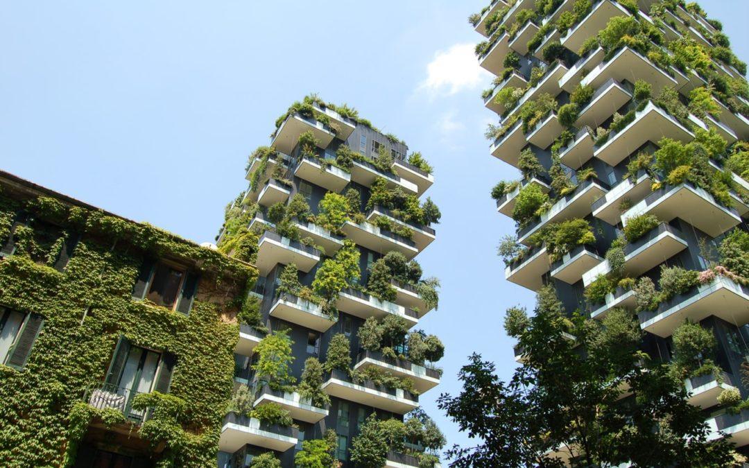 Ecco le case del futuro: un progetto per la sostenibilità